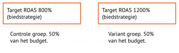 Testen biedstrategie